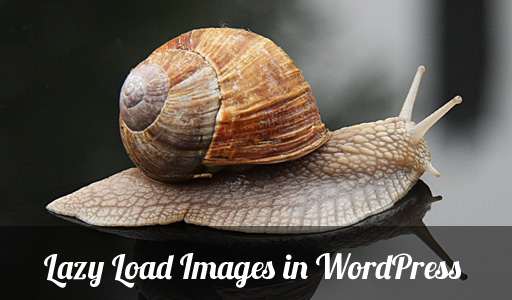 lazy_load_images