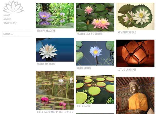 waterlily-theme