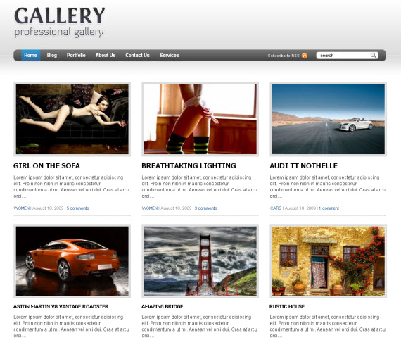 gallery-wordpress-portfolio-showcase-theme1